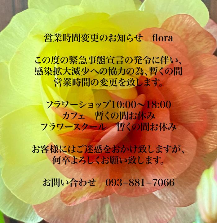D29E262D-D02A-48E5-9F20-18566EA153CB.jpeg